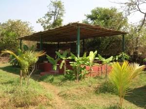 ggokarna yoga garden kudle beach karnataka india