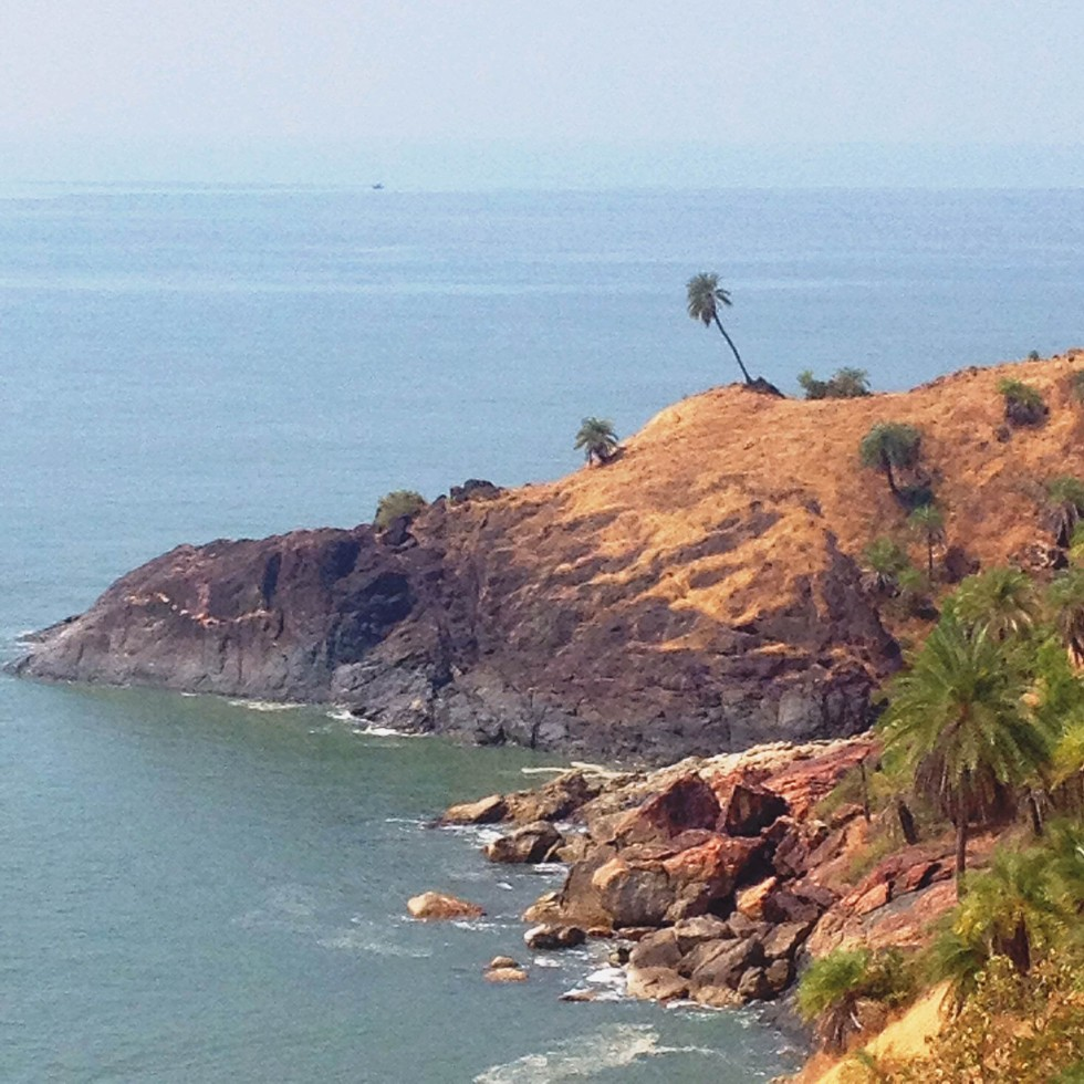 palm tree om beach gokarna karnataka india travel nature hike