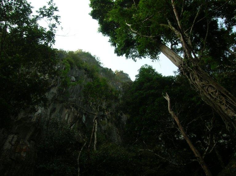 gua charas malaysia