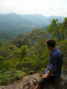 taman negara rainforest malaysia