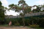 garden kuala lumpur malaysia