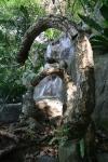 waterfall forest kuala lumpur malaysia travel