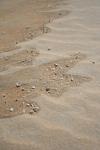 shells sand beach malaysia