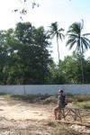 yard portrait cherating malaysia