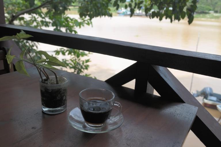 nature kinabatangan river sukau sabah malaysia borneo travel
