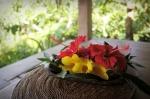 sarinbuana eco lodge bale indonesia travel flowers