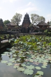 ubud bali indonesia travel saraswati water temple
