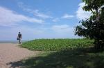 beach seminyak bali indonesia travel