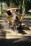 travel gili t island lombok indonesia cidomo horse drawn carriage