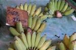 bananas market bangkok thailand