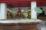 Wat Pho reclining buddha bangkok thailand travel