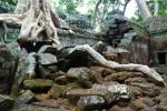 angkor wat temples siem reap cambodia travel