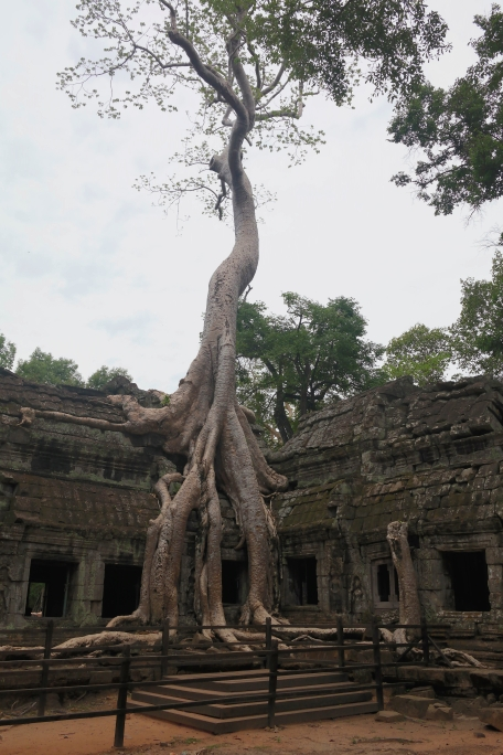 tomb raider temple siem rea cambodia travel